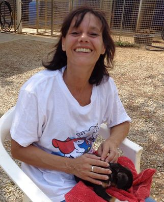animal shelter Bonaire volunteer